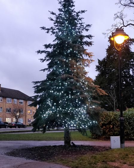 The Christmas Tree in Potters Bar. Picture: Christian Grey.