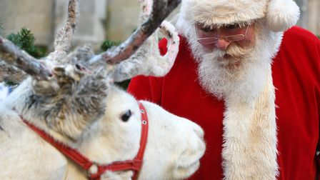 Handmade decorations, tasty festive treats, reindeers and Santa were all at the heart of this year's