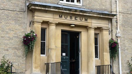 Dig deep on the hunt for real dinosaur relics at Wisbech Museum event. Picture:: ARCHANT