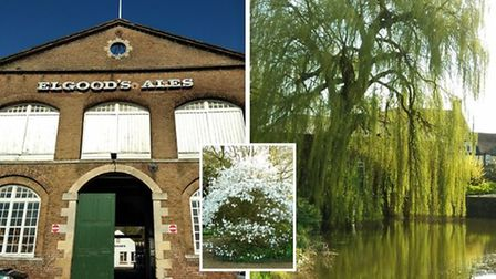 The garden and visitor centre at Elgood's Brewery in Wisbech is closed until the end of April due to