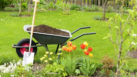 Share a picture of your garden and you could win a prize...
