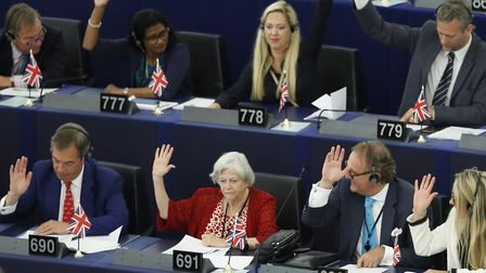 Brexit Party leader Nigel Farage, left middle row, and other parliament members. (AP Photo/Jean-Fran