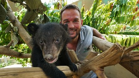 Giles Clark in episode two of Bears About the House with Moon Bear cub David. Picture: BBC/Cherique