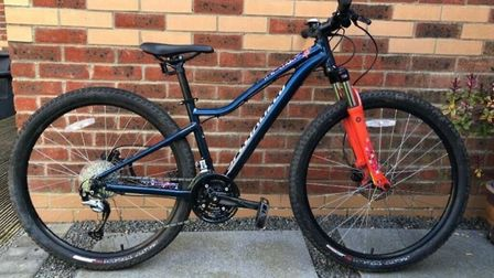 Michelle Knight noticed her bike (pictured) was stolen after finishing a shift at the Alan Hudson Da