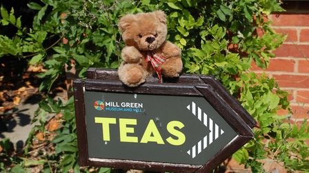 This year's Mill Green Teddy Bear Fun Day will take place online. Picture: Welwyn Hatfield Council