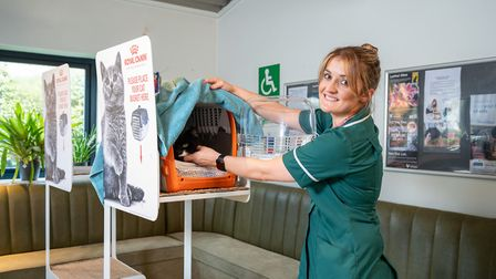 Paddons Veterinary Surgeons in Wisbech has achieved a silver award in the Cat Friendly Clinic progra