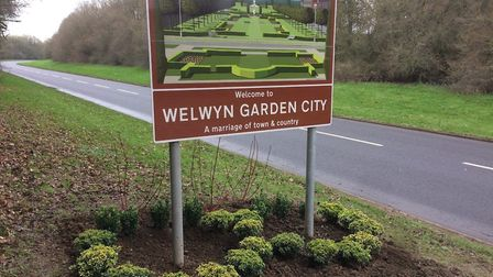 """After the initial planting – you can see the """"W"""" formed by the lighter Euonymus bushes, which will b"""