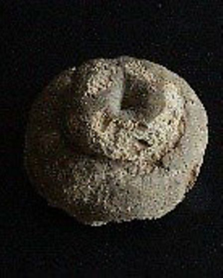 The Ackroyd Scone from Harpenden Museum. Picture: Supplied by HCC
