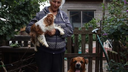 Mary Higgins with two of the dogs she looks after at her animal rescue shelter near Gorefield. Pictu