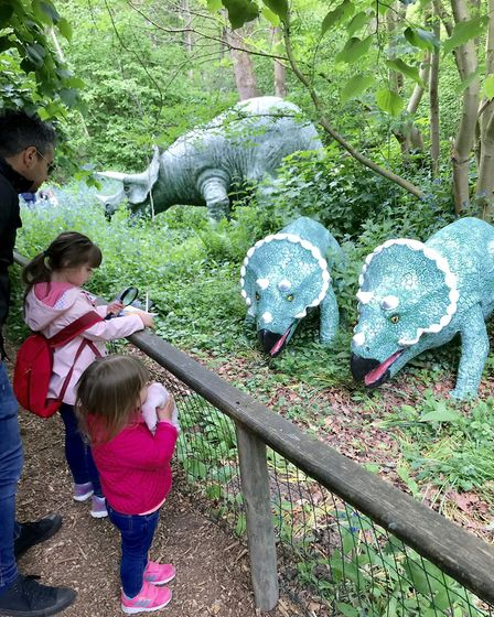 The Dinosaur Trail at Knebworth House. Picture: Knebworth House