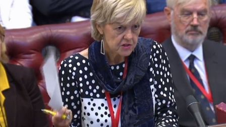 Baroness Hayter was not reassured by Lord Callanan's reply to her question about the Article 50 exte