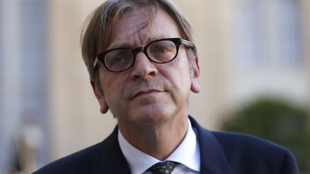 """Guy Verhofstadt has said it would be """"nearly impossible"""" to agree to Boris Johnson's new proposal to"""