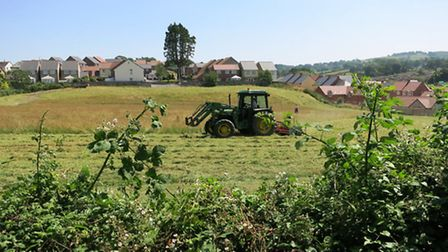Axminster's Jubilee Field gets a much needed mow. Photo by Chris Carson