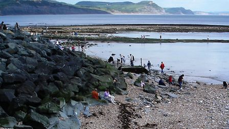 East beach at Lyme Regis - a nicer place to be since the sewage pumping station was built at nearby