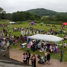 Honiton primary school's summer fair. Ref mhh 26 17TI 5560. Picture: Terry Ife