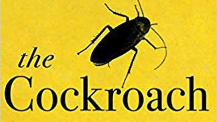 The Cockroach by Ian McEwan. Picture: Archant