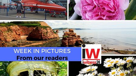 This week in pictures from around East Devon.