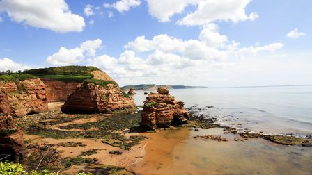 The cliffs taken from Ladram Bay, near Sidmouth. Picture: Leon Woods