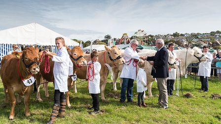 Melplash Show is a showcase for local farmers. Picture: MARK MARGETTS