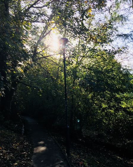 These photos were taken whilst walking in the Glen on a beautiful Autumn morning. Picture: Andrea Be
