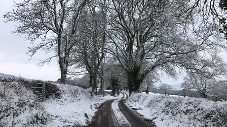 Slade road, Ottery St Mary today. Picture: Jenny Hooper