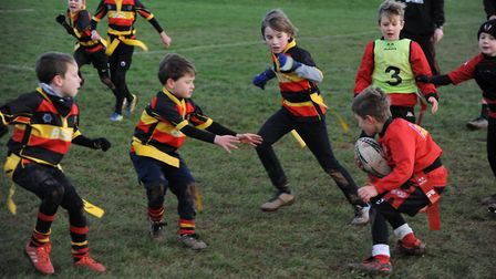 Action from the Honiton Under-8s matches at Exeter Saracens. Picture NICK CUNNINGHAM