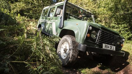 Exploring by Land Rover on a wildlife safari. Picture: Daniel Wildey