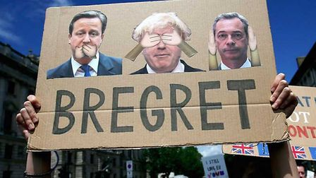 A young anti-Brexit campaigner holds up a 'Bregret' placard. Photograph: Supplied.