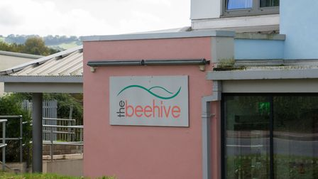 The Beehive in Honiton. Ref mhh 42 19TI 2183. Picture: Terry Ife