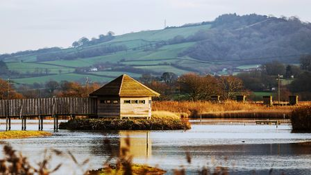 The bird hide at Seaton Wetlands. Picrture EDDC