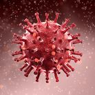 Coronavirus Picture: Getty Images