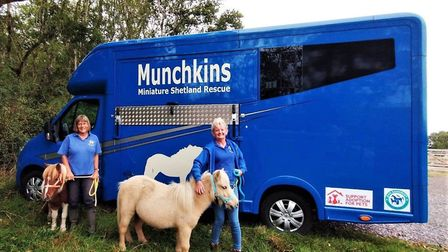 Munchkins volunteers Nicky Hitchcock and Emma Fidge with Shetland ponies Annie and Bilbo. Picture: MMSR