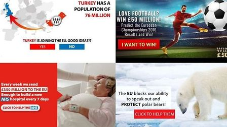 Advertising by pro-Brexit group Leave.EU during the EU referendum campaign. Photograph: Facebook.