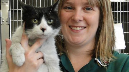 A recovering Baby is pictured with veterinary nurse Kim Kendall at the North Devon Animal Ambulance