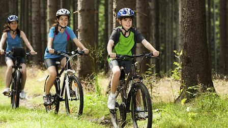 Families and mountain biking enthusiasts could soon enjoy North Devon's first mountain bike trail ce