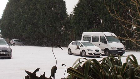 Hail pours down on the car park at Exmoor Zoo near Bratton Fleming.