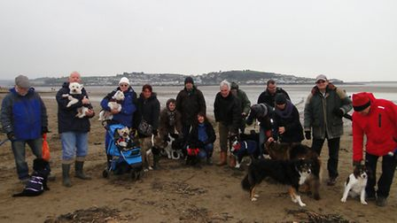 Dog walkers gathered on Instow Beach to protest when it was feared the parish council might introduc