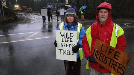 Miranda Cox, Eric Birchall and protestors mounted a roadside campaign against the felling of trees a