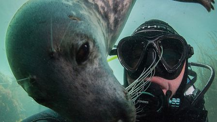 A cheeky seal off Lundy Island, captured in a self portrait by underwater photographer Nick Blake, h