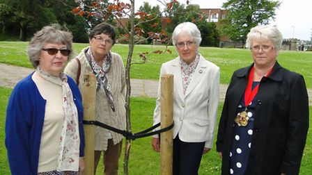 Rosemary Beer, Sylvia Pink and Magaret Slocombe of the Barnstaple Longbridge Townswomen's Guild, and