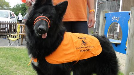 Blind German Shepherd Jacob is the face of the charity.