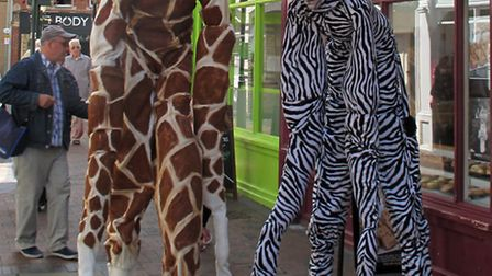 A giant stilt-walking giraffe and zebra paraded up and down the High Street.