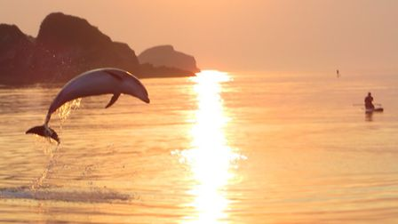 This stunning picture was taken by Paul Rogers aboard the Ilfracombe Princess during 'Sunset Cruise'