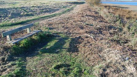 The former Yelland power station site after vegetation was cut back.