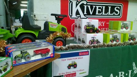 Some of the lots for sale at Holsworthy Market during the charity Christmas auction.