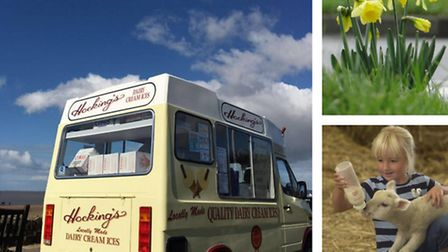 Signs of spring in North Devon including Hocking's, daffodils and newborn lambs.