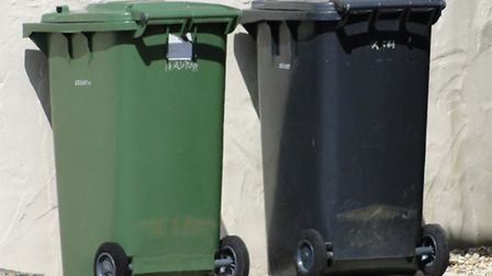 Will the green bin collection remain a free service?