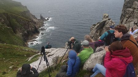 Watching the puffins on Lundy Island.