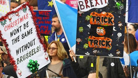 Some of the most creative protest signs from the People's Vote march. Picture: Victoria Jones/PA Wir
