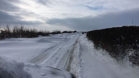 The road at Whitefield Hill near Berry Down. Picture: Tony Gussin